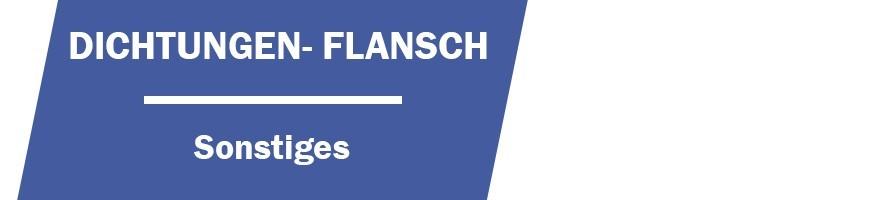 Dichtungen- Flansch