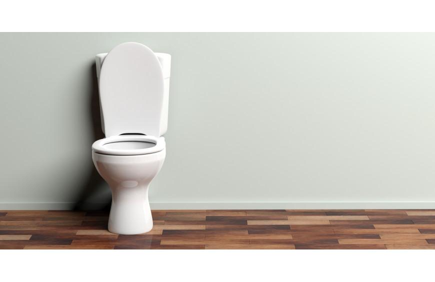 Wie finde ich das passende WC ?